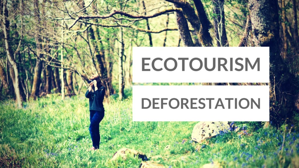 Ecotourism as a Systematic Means to Decrease Deforestation in National Parks