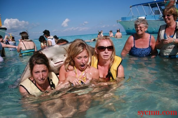 Everybody smile with stingray