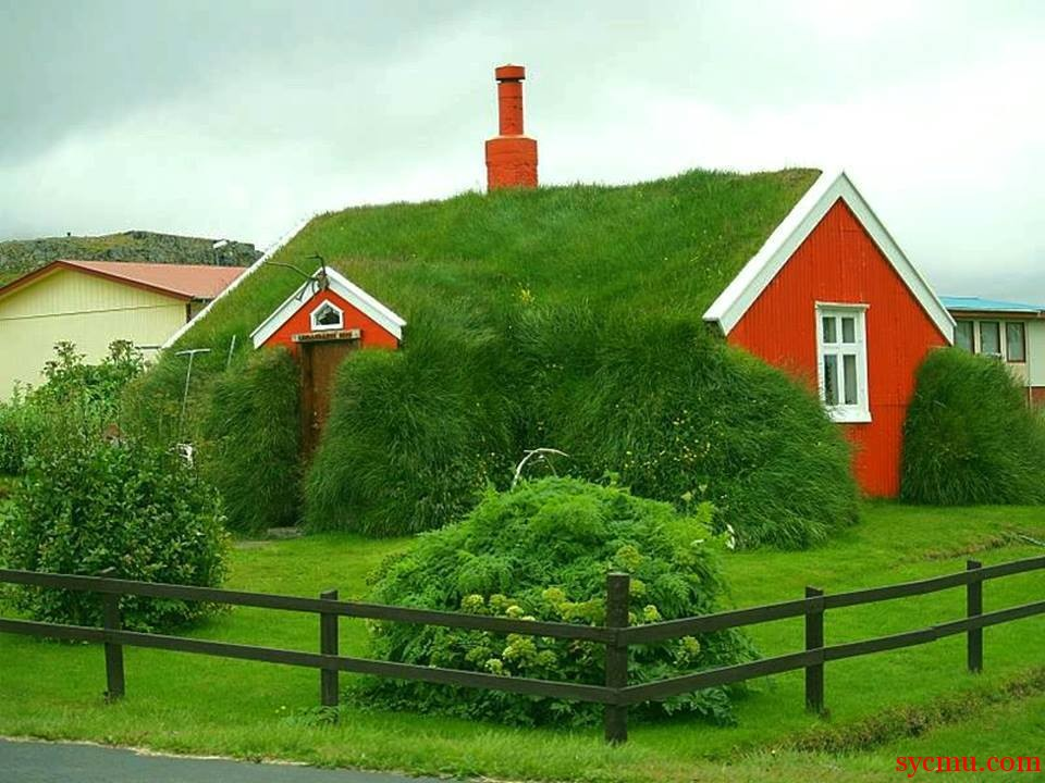grass covered house 2