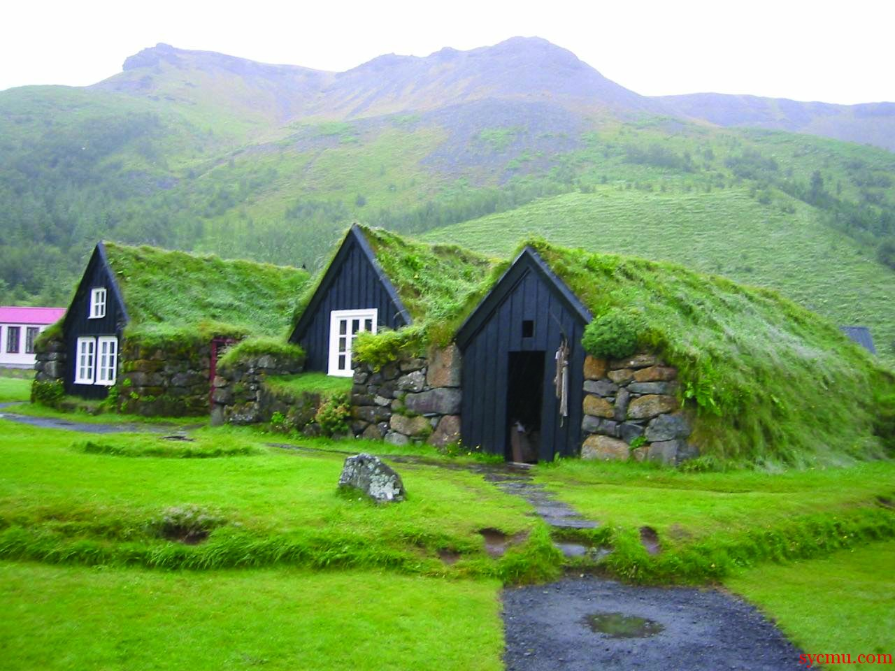 Grass Covered House on Icelandic Turf House
