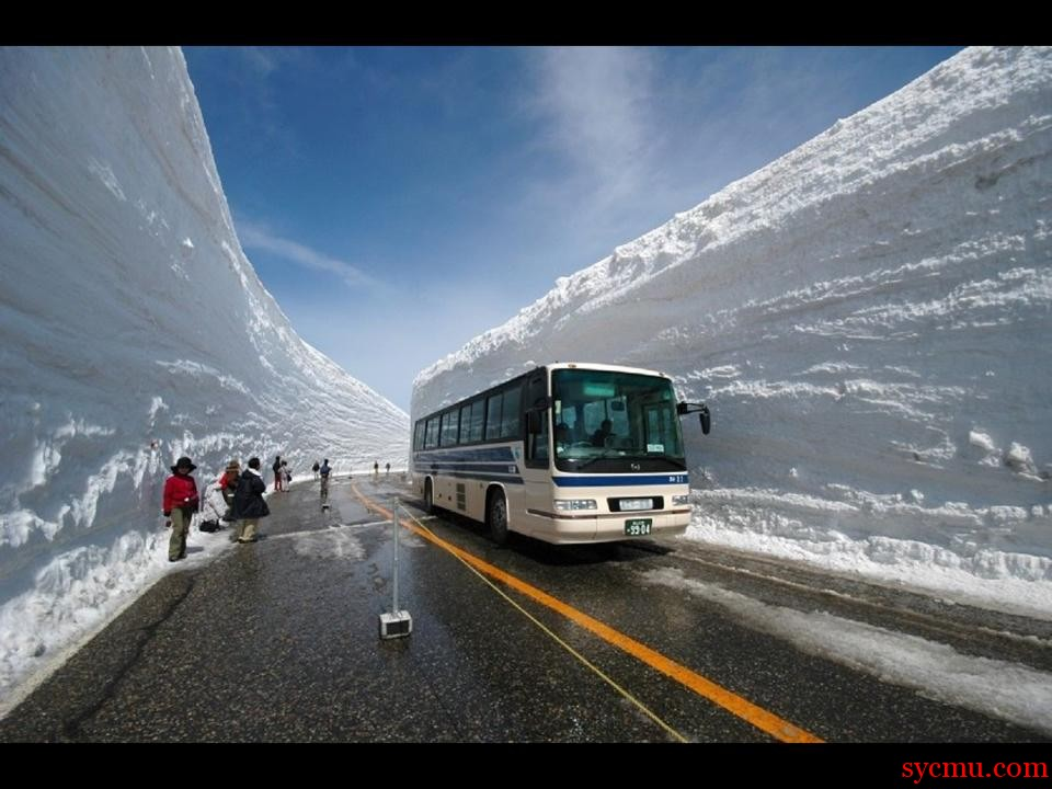 Bus Stop in The Snow
