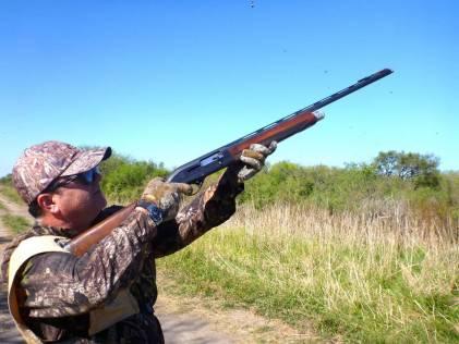 Caça de pombas en Argentina
