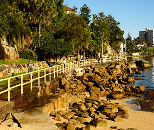 Walking Path From Manly To Shelly Beach At 8am On An Autumn Morning