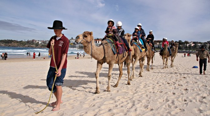 NOW FOR SOMETHING COMPLETELY DIFFERENT – A CAMEL RIDE AT BONDI BEACH