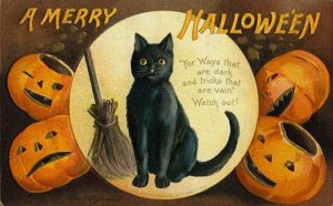 vintage-halloween-postcards_black-cat