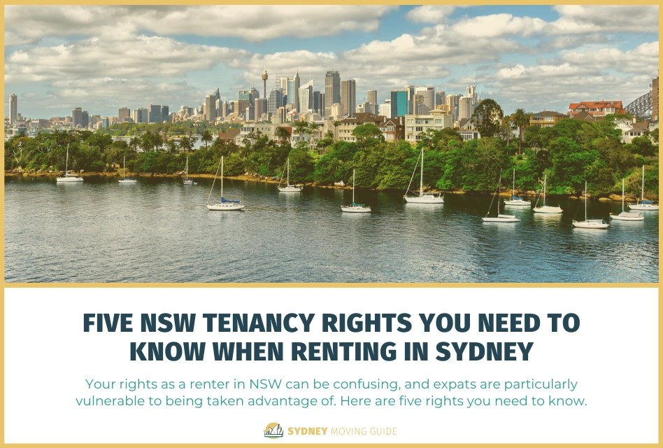 Five NSW Tenancy Rights You Need to Know When Renting in Sydney