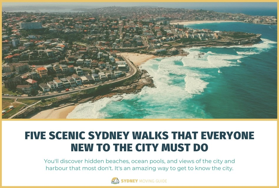 Five Scenic Sydney Walks That Everyone New to the City Must Do