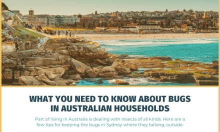 What You Need to Know About Bugs in Australian Households