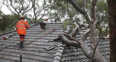 sydney roof insurance work