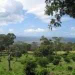 Our Hike to San Ramon Waterfall on Ometepe