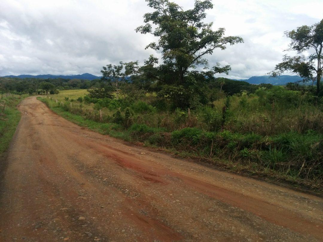brown dirt road
