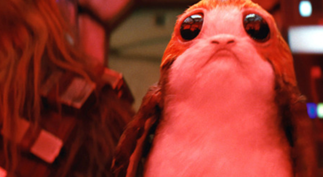 Image result for porgs