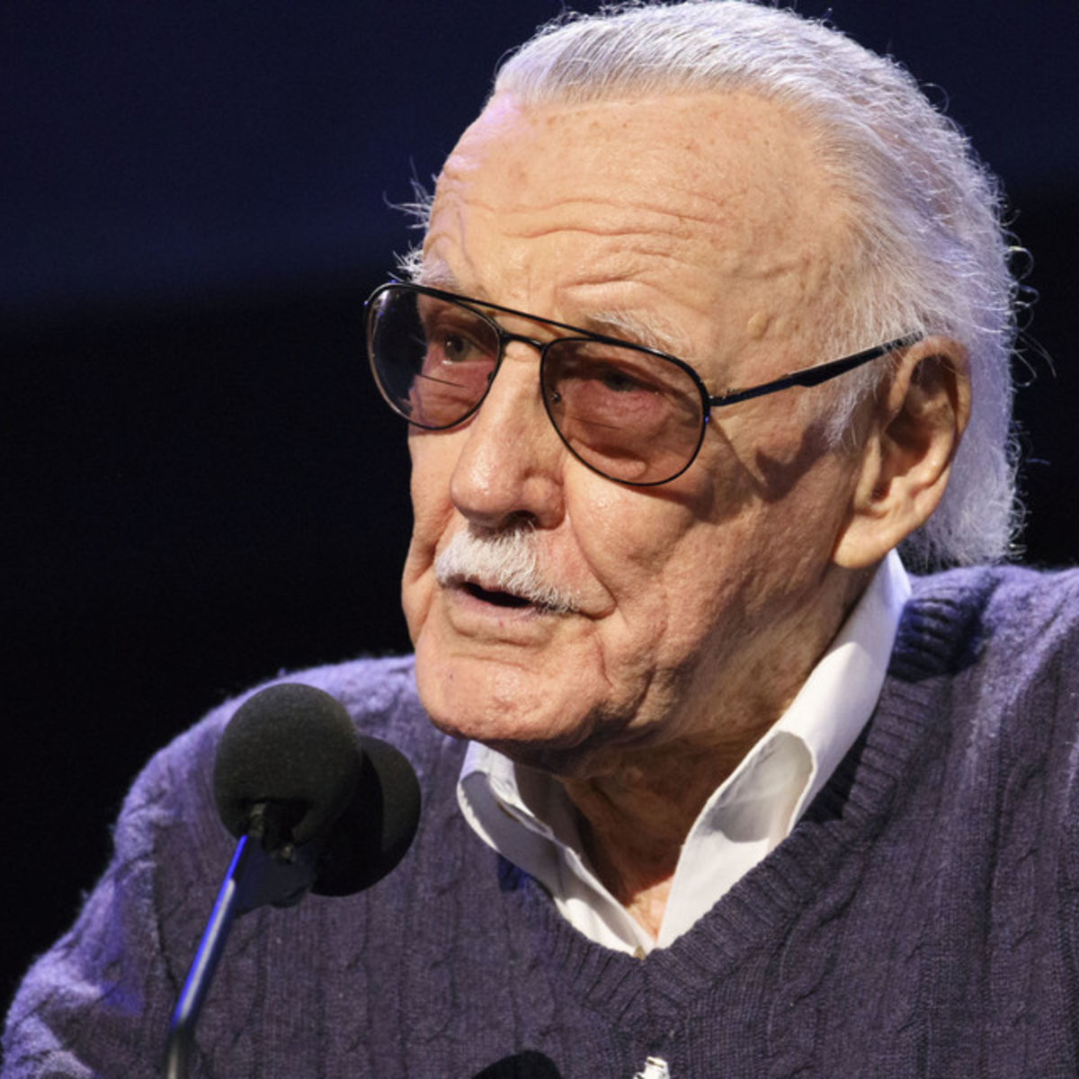 Stan Lee Says Recent Personal Turmoils Are Resolved