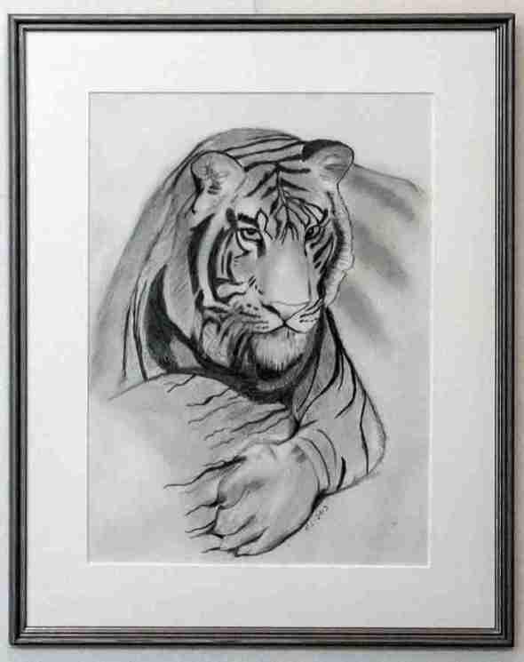 Eeva Sutinen: Tiikerin katse