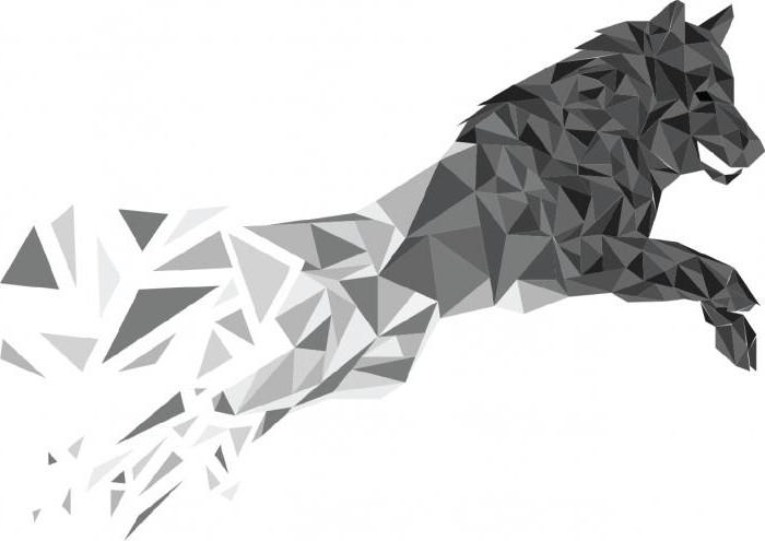 Photo de polygone.