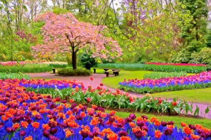 spring-season-nadia-sanowar-600x399