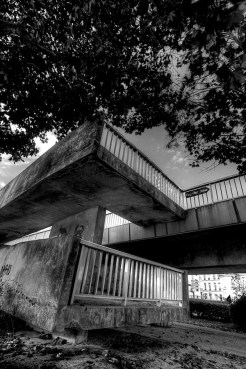 reims en noir et blanc 5