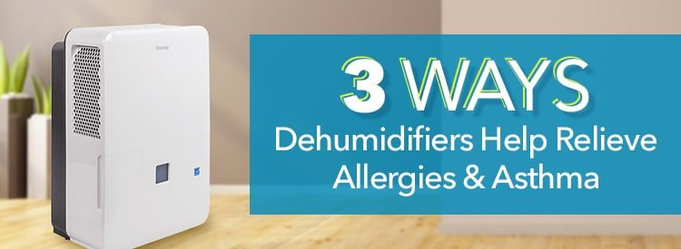 3 Ways Dehumidifiers Help Relieve Allergies and Asthma ...