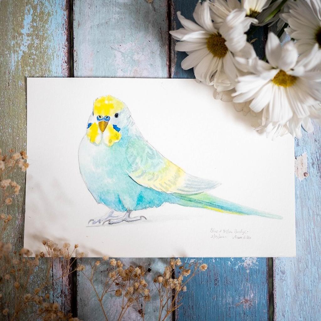 parakeet artwork watercolor painting