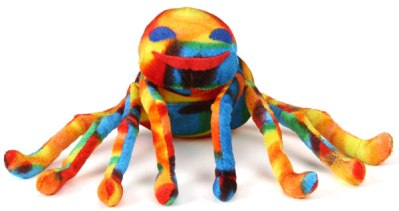 Celebrating Simchat Torah Just Like Sammy Spider