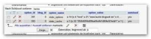 Bild - Datenbankeinträge der Statistik von der Bunten Blogwelt