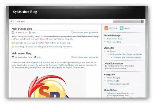 Theme Nueve noch bei WordPress.com