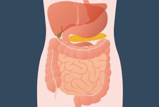 Syndróm dráždivého čreva
