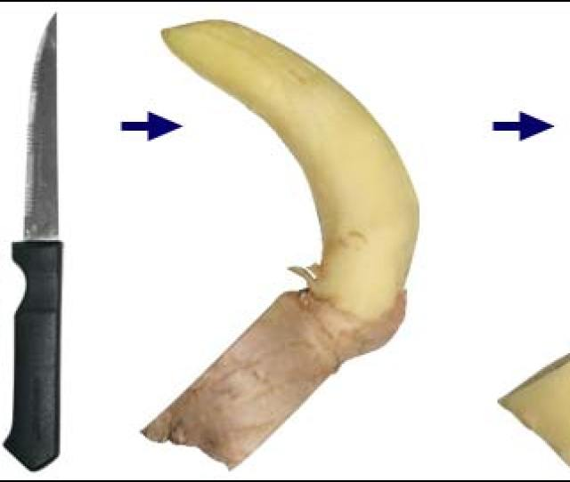 How To Carve A Ginger Root For Figging