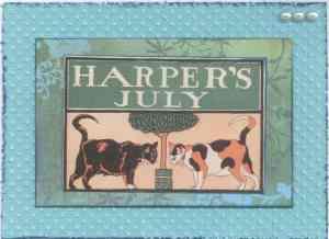 Harper's cat birthday