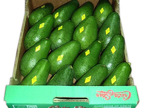 Organic Avocados Συνεργατική ΑΕ