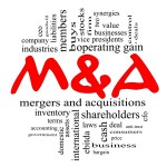 Boutique M&A Firm NY NJ CT PA MA TX