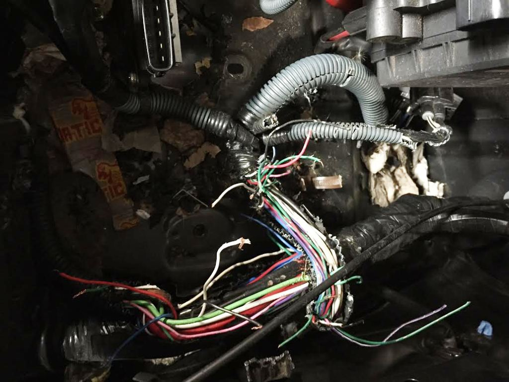 engine wiring harnesses for cars