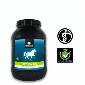 The benefits of Vitamin E supplementation in horses - Synovium Horse Health