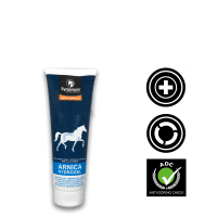 Arnica for horses, horse muscle recovery