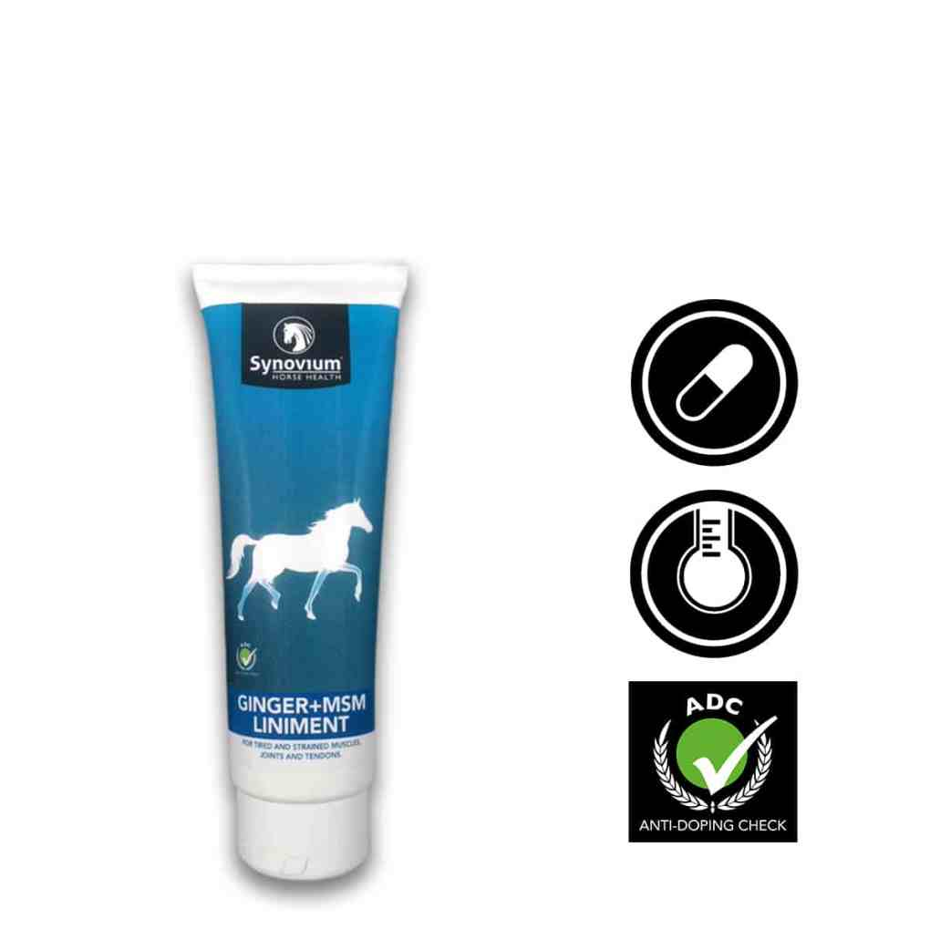 Synovium Horse Liniments MSM, Ginger 250ml