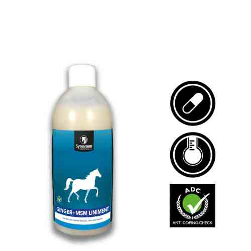 horse liniment for muscles with ginger and msm