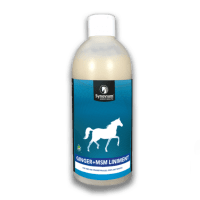 Ginger and MSM horse liniment for horses muscles, tendons and ligaments Synovium