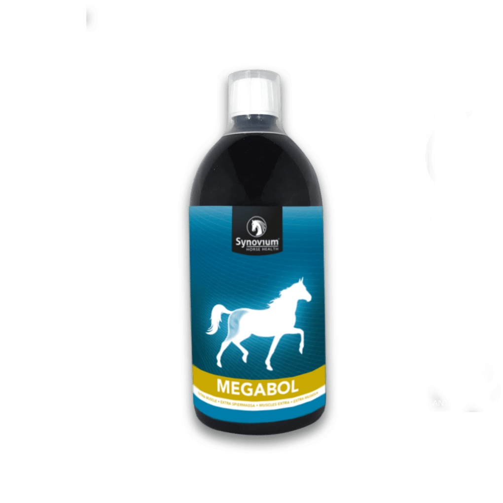 Megabol Synovium best Muscle builder for horses, Gamma Oryzanol for horses (Rice Bran Oil)