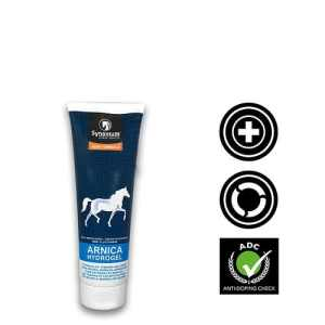 The Benefits of Arnica for Horses and its uses - Synovium Horse Health