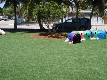 Grace-lutheran-Playfeild