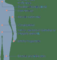 hypothyrodism [ 730 x 1280 Pixel ]