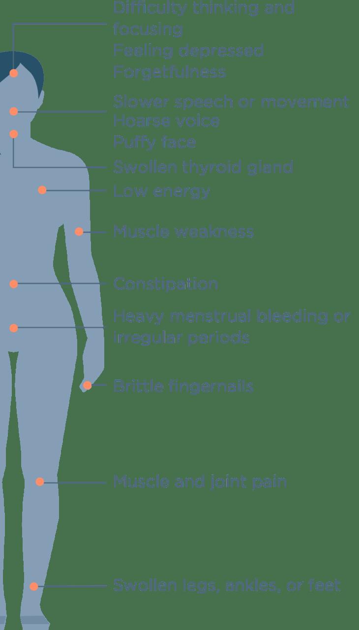 hight resolution of hypothyrodism