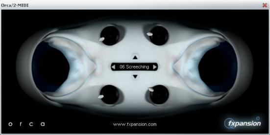 orca screenshot