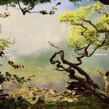 harmonia-and-brian-eno-remixes