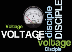 Free Live Rack from Voltage Disciple
