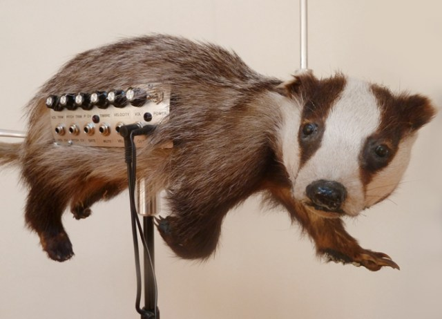 badgermin theremin