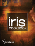 iZotope_IrisCookbook_web-231x300