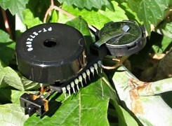 robotic-insects