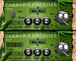 cannibis