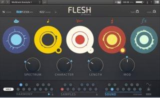 native-instruments-flesh